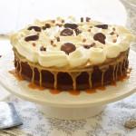 על עוגת שוקולד עם קרם דולצ'ה ואסונות מטבח קטנים